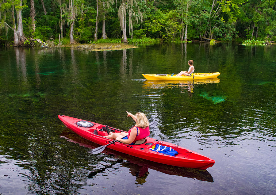 Best Things to Do in Gainesville, FL During Summer