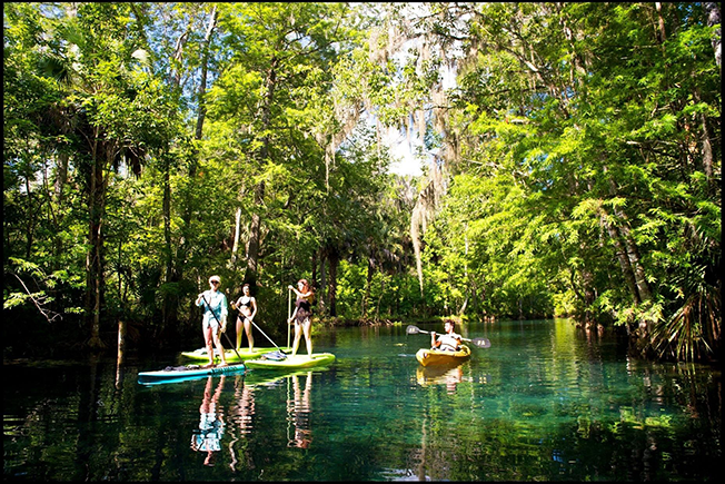 Springs Near Gainesville: Silver Springs